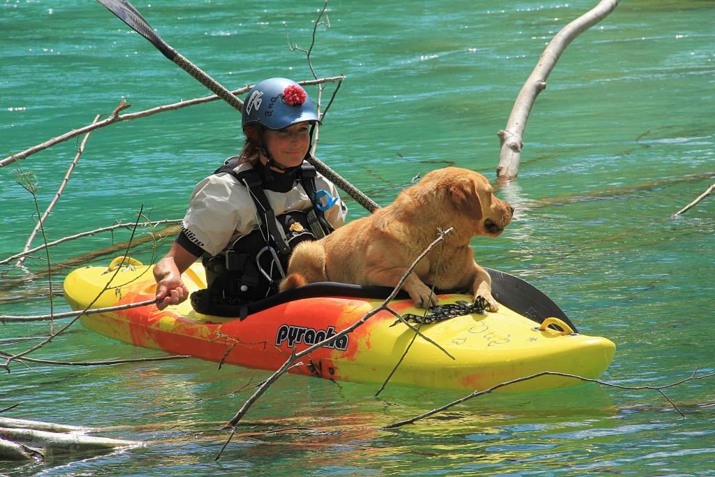 kayaker with dog on soča river