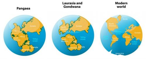continental drift of pangea and creation of europe and africa